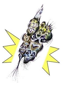 le crane couronne net